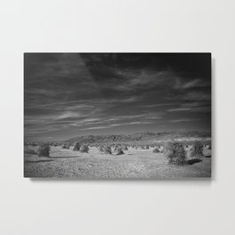 bringing water from a distant spring Metal Print