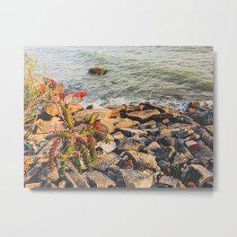 Rocks Beach Metal Print