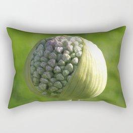 Erwin Rectangular Pillow