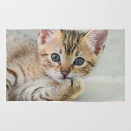 Smirking kitten Rug