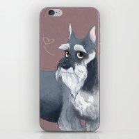 schnauzer iPhone & iPod Skins featuring Schnauzer by Bark Point Studio