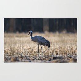 Eurasian crane Rug
