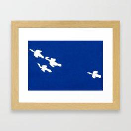 Apus Framed Art Print
