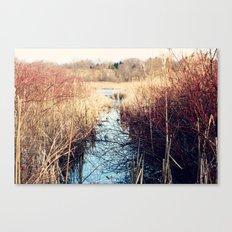 Unconfined Solitude Canvas Print