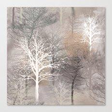 Morning Mist 2 Canvas Print