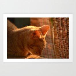 Resting Sunset Art Print