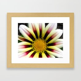 Floral Beauty #7 Framed Art Print