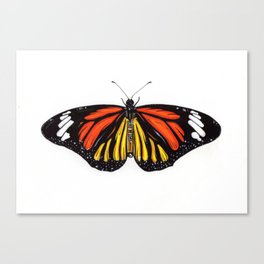'BUTTERFLY' Canvas Print