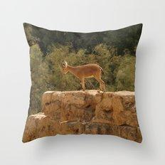 Yael Throw Pillow