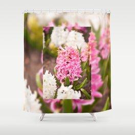 Hyacinthus flowering cluster pink Shower Curtain