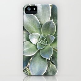 Succulent Photography | Nature | Green Cactus | Floral | Art Print iPhone Case