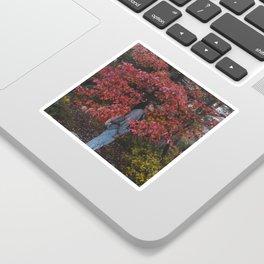 FliFli Sticker
