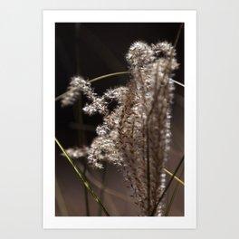 Fuzzy Brush Weed Art Print