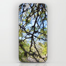 Colors of Nature iPhone Skin