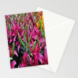 Lily Palooza Stationery Cards