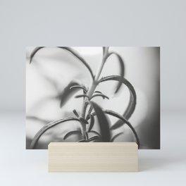 Rosemary Kitchen Black and White Mini Art Print