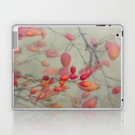 Cinorrodo Laptop & iPad Skin