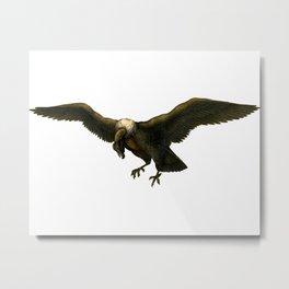 Vintage Vulture Metal Print