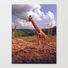 Appalachian Wonderland No. 3 - Safari Canvas Print