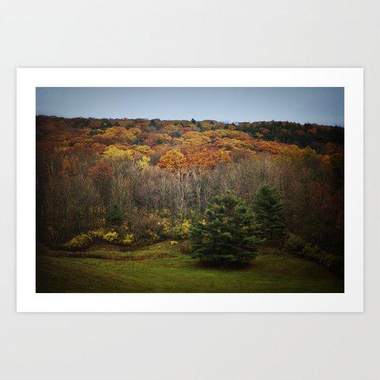 October Mountain Forest Art Print