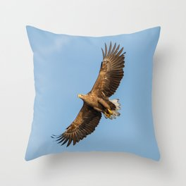 White-Tailed Eagle from below Throw Pillow