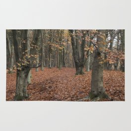 Autumn Forest Rug