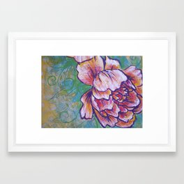 Peonie Study II Framed Art Print