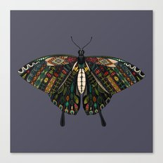 swallowtail butterfly dusk Canvas Print