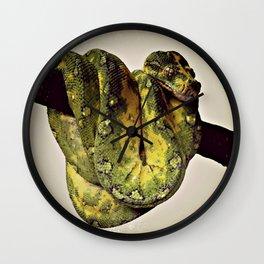 Green Tree Python 2 Wall Clock
