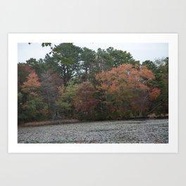 Autumn Wonders Art Print