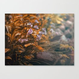 Misty Morning Behind The Garden Wall Canvas Print