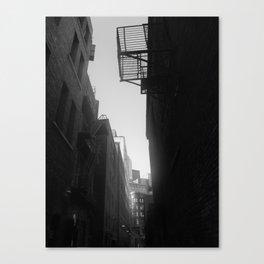 713a Canvas Print