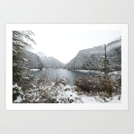 Winter wilderness Art Print