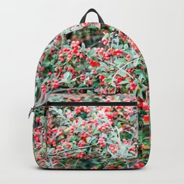 Creeping Cotoneaster Backpack