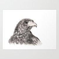 hawk Art Prints featuring Hawk by Averin Art