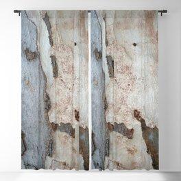Bark Of A Eucalyptus Tree Blackout Curtain