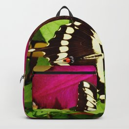 Rosemoor and Butterfly Backpack