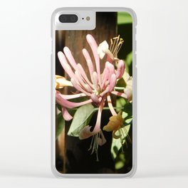 Pink Firework Clear iPhone Case