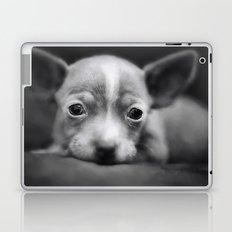 Tiny Chihuahua Laptop & iPad Skin