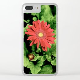 Red Daisies Clear iPhone Case