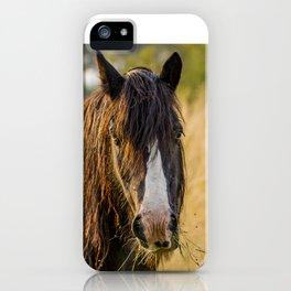 Autumn Horse iPhone Case