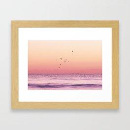 Flying High Pastel Beach Photograph Framed Art Print