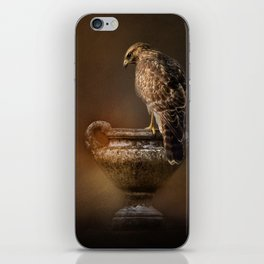 Sacred Moment iPhone Skin