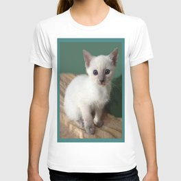 Am I Adorable? Or What? T-shirt