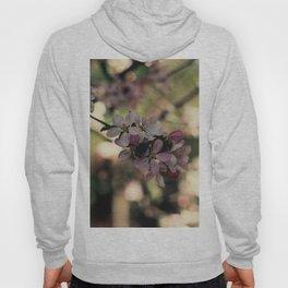 blossum Hoody