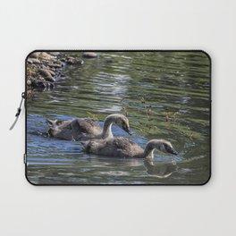 Two Goslings Taking a Swim, No. 1 Laptop Sleeve