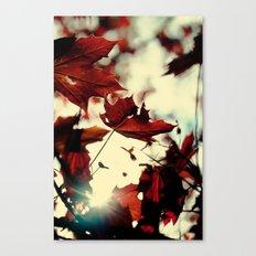Autumn Leafs Canvas Print
