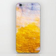 Indian Summer 4 iPhone & iPod Skin