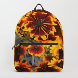 a touch of color Backpack