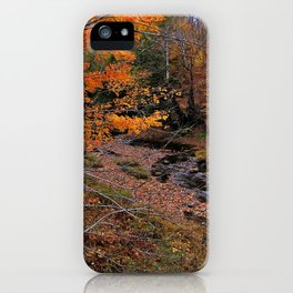 Winding Brook iPhone Case